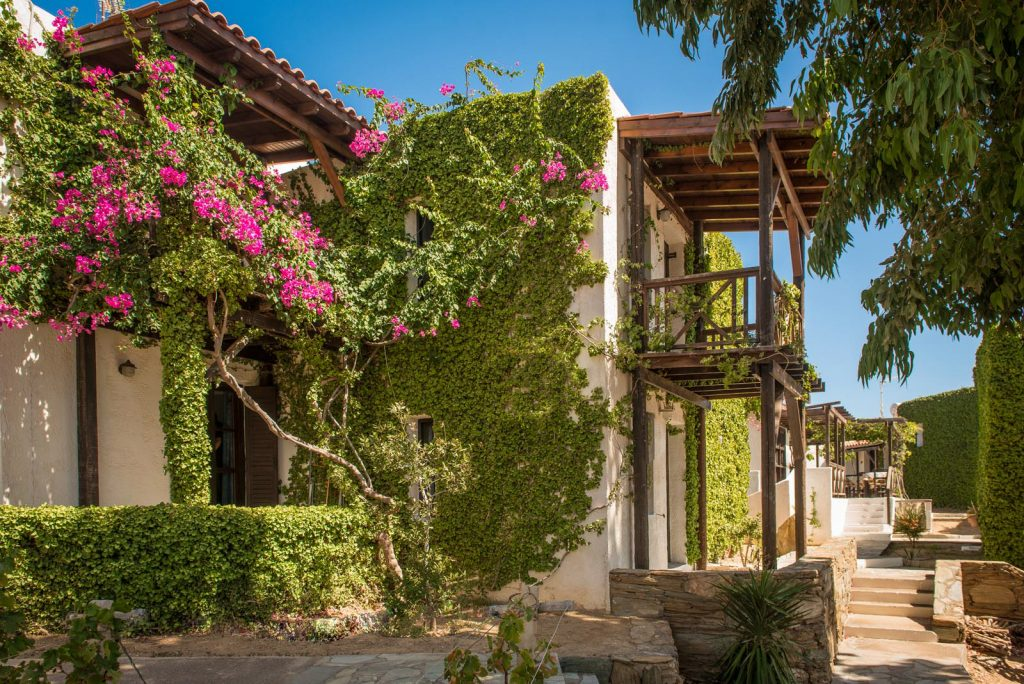 double apartments ambelos apartments crete greece cretan hospitality nature peacefulness agia pelagia