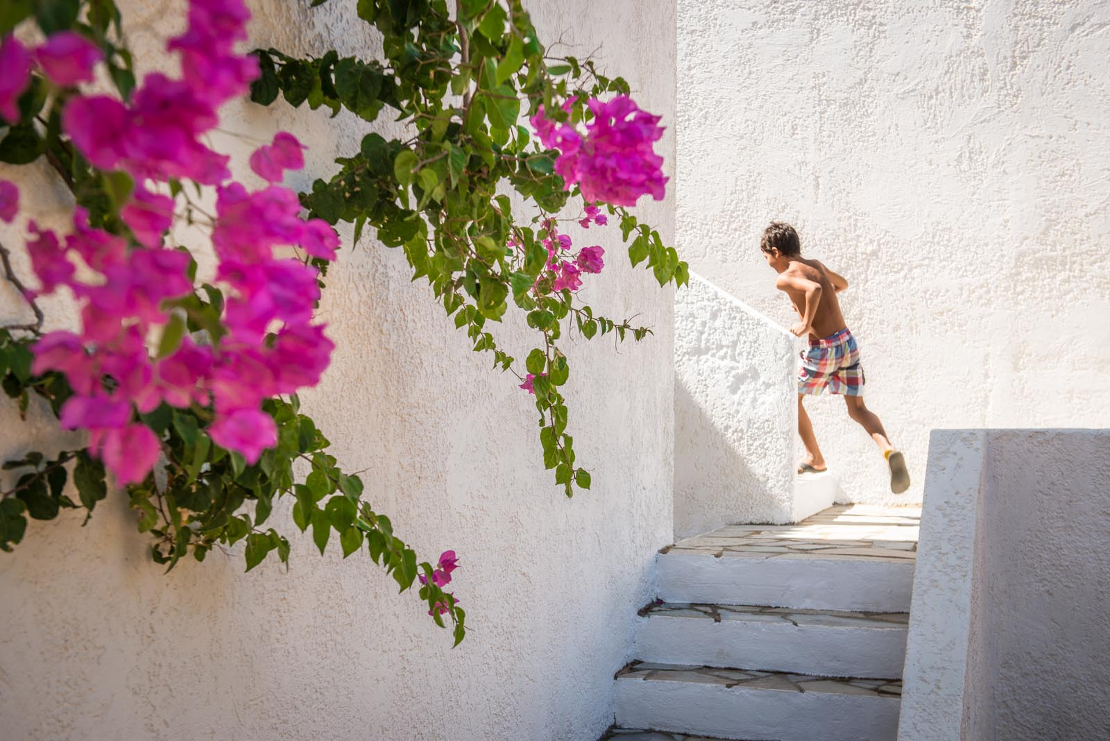 ambelos apartments and studios agia pelagia crete greece nature peacefulness cretan hospitality relaxation tranquillity holidays